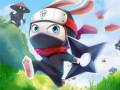 Oyunlar Ninja Rabbit